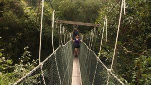 10 Kegiatan Menarik Dilakukan di Taman Negara Malaysia